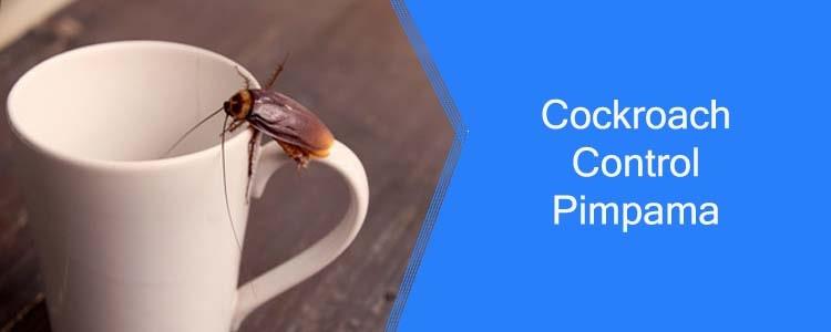 Cockroach Control Pimpama