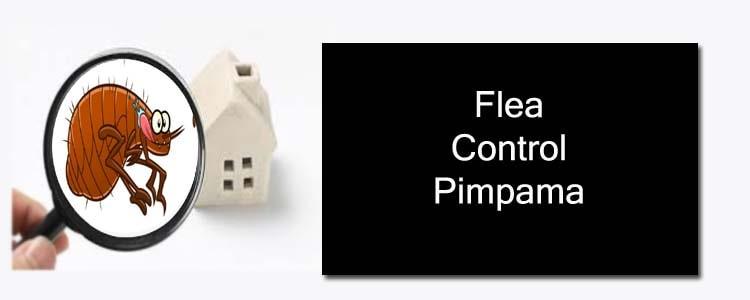 Flea Control Pimpama